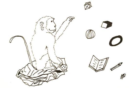 singe-réciprocité