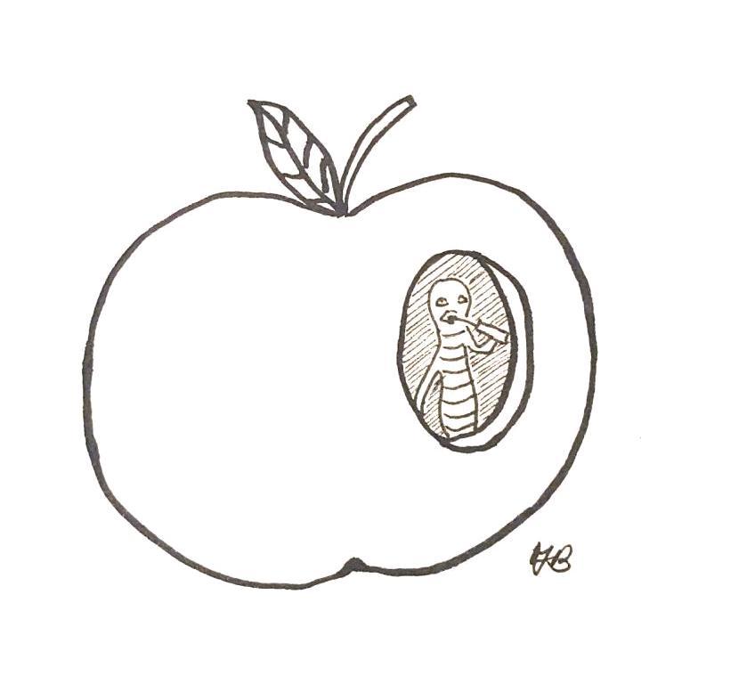 vert-etfruit.png